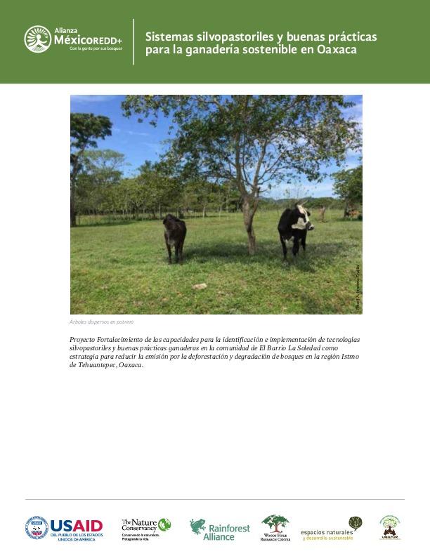 Sistemas silvopastoriles y buenas practicas para la ganadería sostenible en Oaxaca.pdf