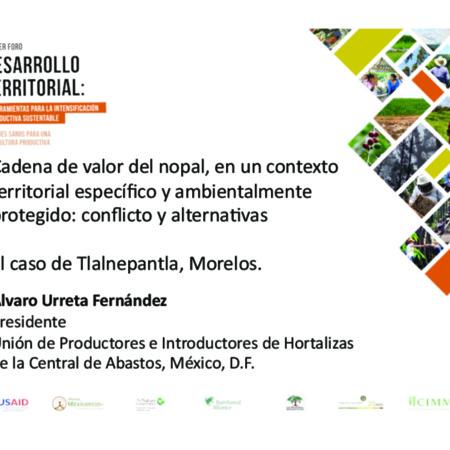 Cadena de valor del nopal, en un contexto territorial específico y ambientalmente protegido: conflicto y alternativas. El caso de Tlalnepantla, Morelos