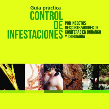 Guía control de infestaciones por insectos descortezadores de coníferas en Durango y Chihuahua