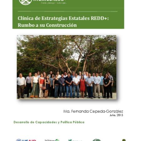 Clínica de Estrategias Estatales REDD+: rumbo a su construcción