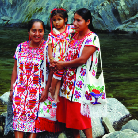 Incorporación de la perspectiva de género en políticas y leyes vinculadas con cambio climático y REDD+ México