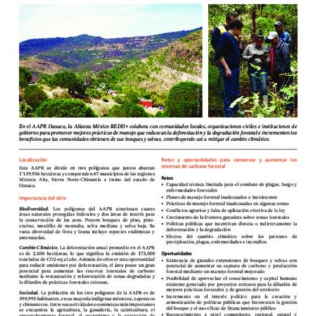 Área de Acción Prioritaria REDD+ en Oaxaca