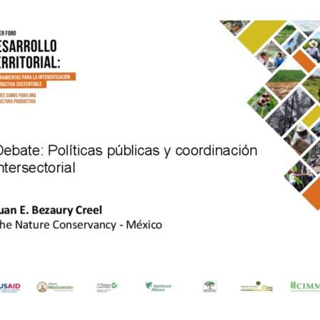 Debate: Políticas públicas y coordinación intersectorial