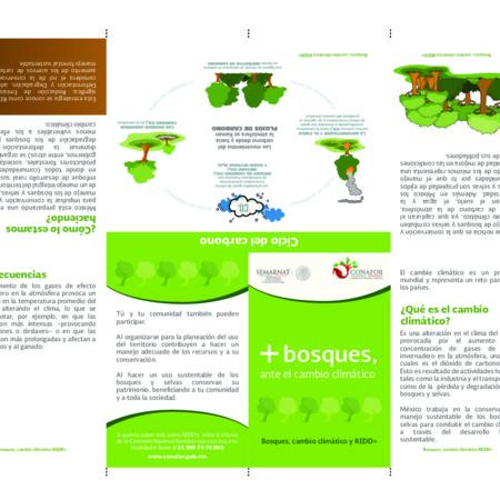 +Bosques, ante el cambio climático