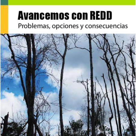 Avancemos con REDD: problemas, opciones y consecuencias