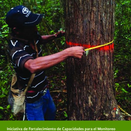 IniciativaCapacidadesMonitoreoComunitario-2014-mx-01.pdf