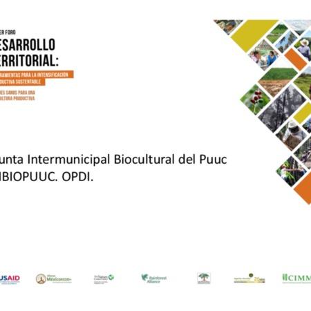 Junta Intermunicipal Biocultural del Puuc JIBIOPUUC. OPDI.