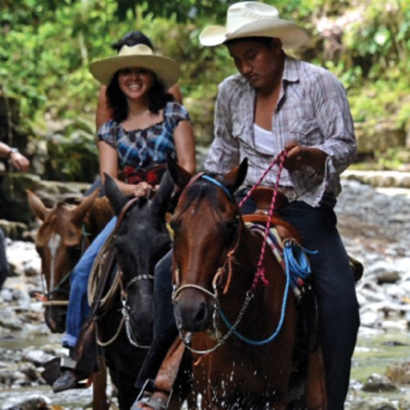¿Cómo el sector de turismo puede sumar esfuerzos para la mitigación al cambio climático en el contexto de REDD+?