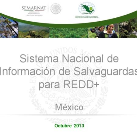 Sistema Nacional de Información de Salvaguardas para REDD+