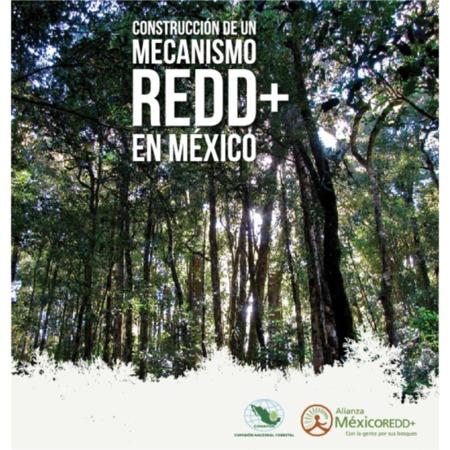 Construcción de un mecanismo REDD+ en México