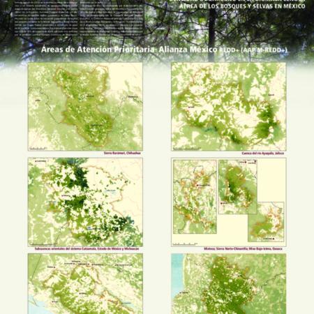 Densidad de carbono en la biomasa leñosa aérea de los bosques y selvas de México. Versión 1.0.: Áreas de Atención Prioritaria Alianza México REDD+