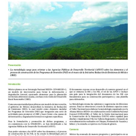 Metodología para el desarrollo de los programas de inversión: Iniciativa de Reducción de Emisiones