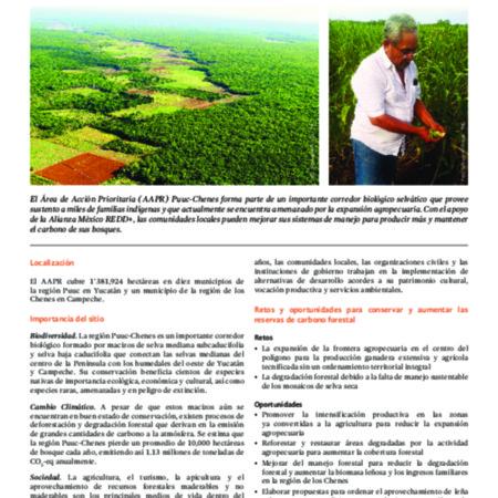 Área de Acción Prioritaria REDD+ en la Península de Yucatán