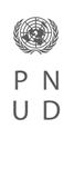 P_PNUD_blanco