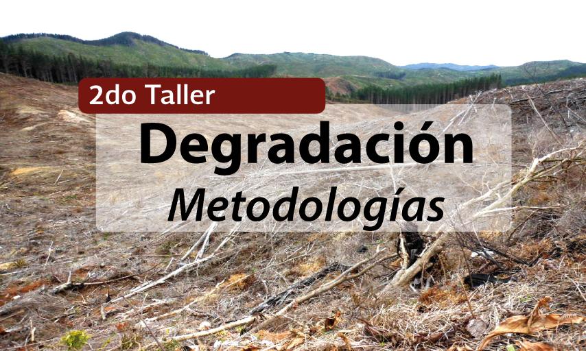 Taller Regional: Elementos, métodos y herramientas para cuantificar degradación forestal