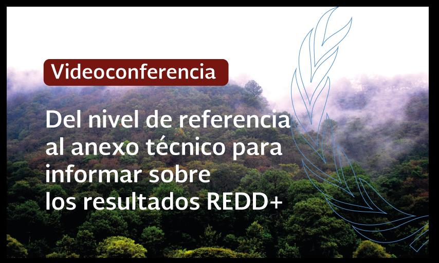Videoconferencia: Del nivel de referencia al anexo técnico para informar sobre los resultados REDD+