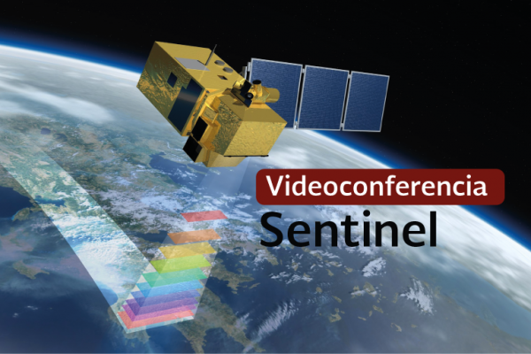 Videoconferencia: Sentinel 1 para la detección y mapeo de cambios por deforestación