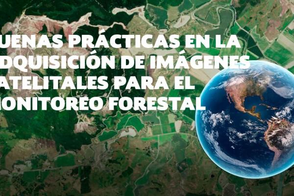 Videoconferencia: Buenas prácticas en la adquisición de imágenes satelitales para el monitoreo forestal