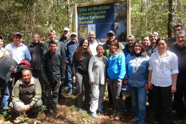 Lecciones aprendidas en el establecimiento y operación de Sitios de Monitoreo Intensivo de Carbono