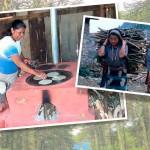 Bosques y energía para la seguridad alimentaria en Centroamérica