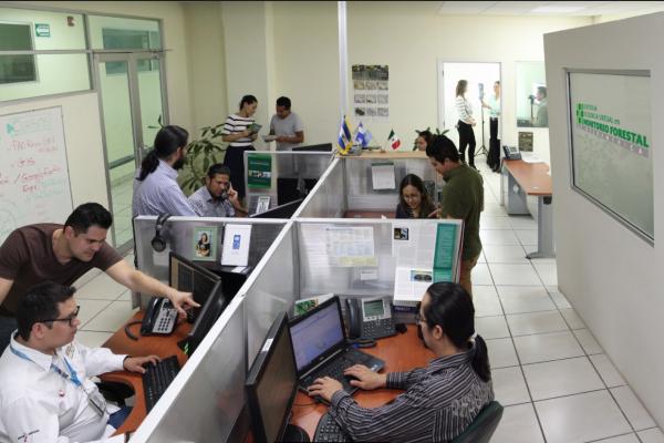 Cumple su primer año el Centro de Excelencia Virtual en Monitoreo Forestal en Mesoamérica