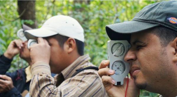 La FAO presenta las nuevas directrices voluntarias para apoyar a los países en el Monitoreo Forestal Nacional