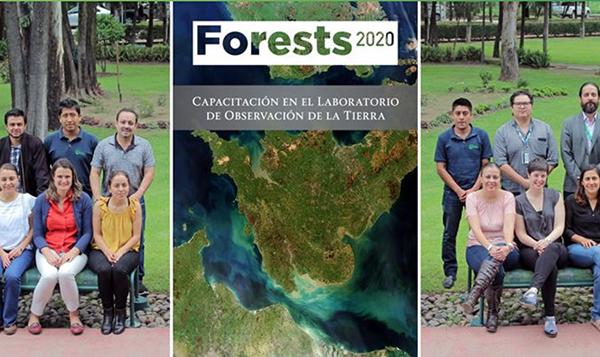 IPP Forest 2020 México Capacitación Técnica en el EO Lab (Ecometrica)