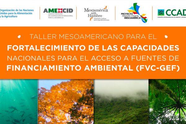 Taller de fortalecimiento de las capacidades nacionales para el acceso de fuentes de financiamiento ambiental (FVC – FMAM)