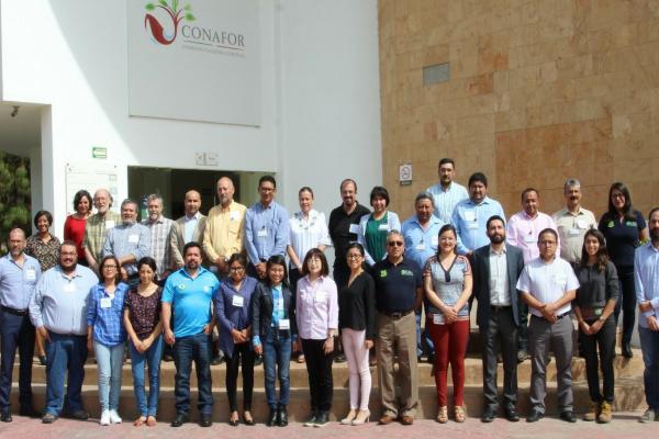 Modelado de dinámica de carbono en ecosistemas forestales de México para apoyar la toma de decisiones en el manejo de los recursos forestales basados en escenarios de mitigación