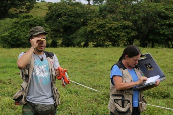 Invitación a Video-conferencia sobre Retos para la actualización continua de los Inventarios Forestales Nacionales