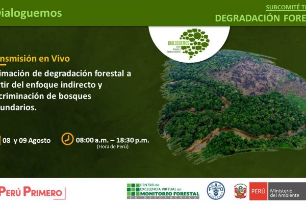 """Taller """"Estimación de degradación forestal a partir del enfoque indirecto y discriminación de bosques secundarios"""""""