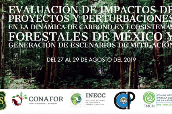 """Taller """"Evaluación de impactos de proyectos y perturbaciones en la dinámica de carbono en ecosistemas forestales de México y generación de escenarios de mitigación"""""""