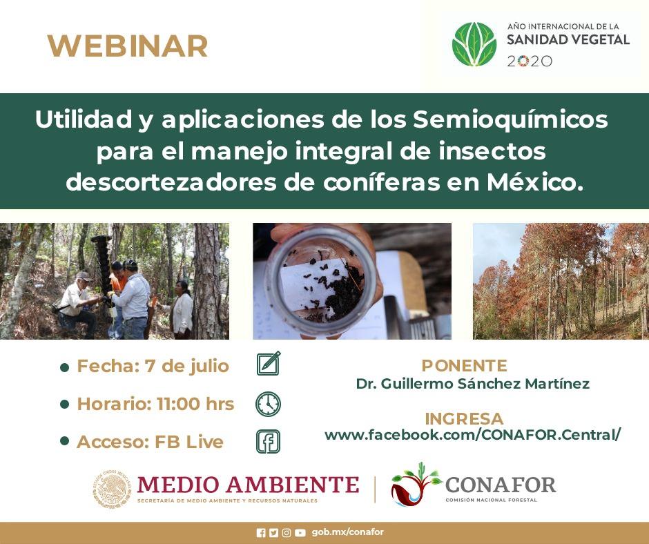 Webinar Utilidad y aplicaciones de los Semioquímicos para el manejo integral de insectos descortezadores de coníferas en México